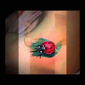 Popular Ladybug Tattoo Designs
