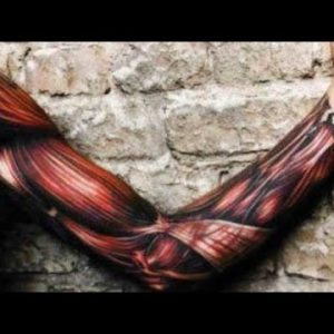 TOP 10 BEST MUSCLE TISSUE TATTOO DESIGNS IN 2020
