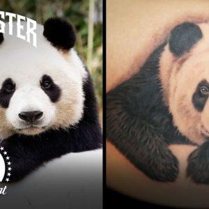 Best Tattoos of Season 11 🏆 Ink Master